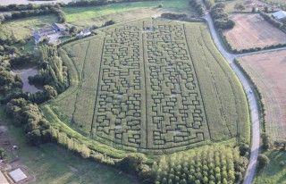 labyrinthe-de-mais
